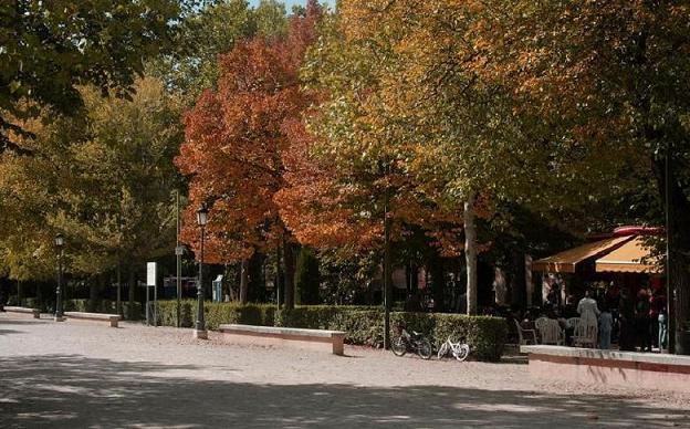 20121009211323-25-alameda-octubre-mg-9959.jpg